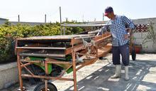 南市推廣養殖漁業機械自動化(2) (圖)