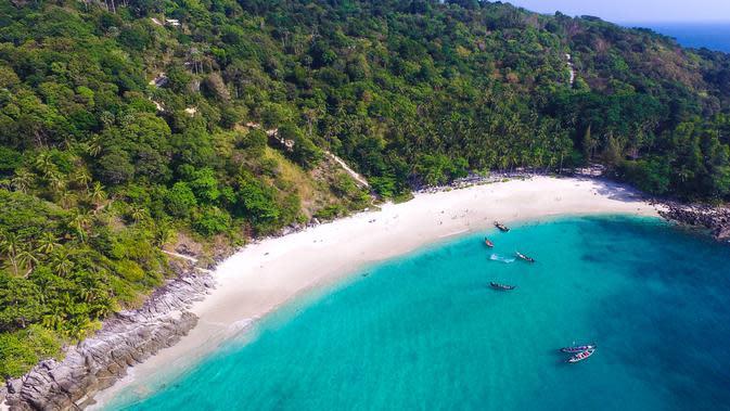 Freedom Beach, pantai yang dikelilingi hutan lebat.