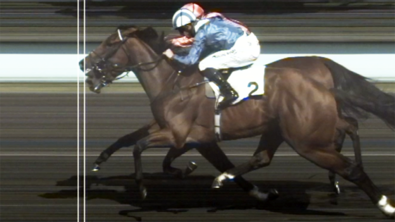 Loving Glance (far horse), pictured here in the photo that appears to show it won.