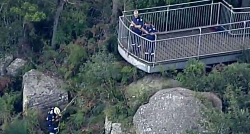 Rescuers scale Robertson Lookout, in Mount Keira near Wollongong on Tuesday afternoon after a mum and her toddler plunged to their deaths.