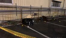 男遭人追殺喪命停車場 又1犯嫌投案、涉案10人全數到案