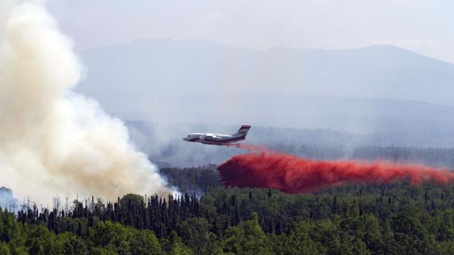 Ein Löschflugzeug lässt über einem in der Nähe von Montana Creek brennenden Wald Löschmittel ab. In der Arktis und anschließenden Regionen toben Forschern zufolge Waldbrände in einer bislang nicht gemessenen Zahl. Foto: Michael Risinger/Zuma Press