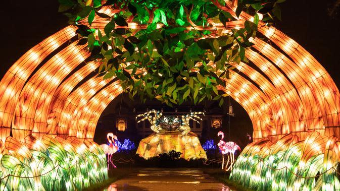Gambar pada 15 November 2019 menunjukkan lampu berwarna-warni menyala terang sebagai bagian dari pameran festival cahaya di Kebun Binatang Jardin des Plantes, Paris. Festival Cahaya bertajuk