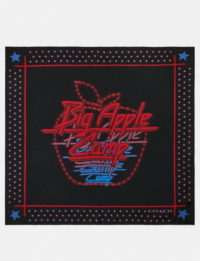 Disco Silk Bandana