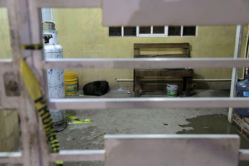 Gunmen attack Mexican drug rehab center killing 24