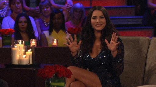 Behind-the-Scenes Bits: All the Things You Didn't See on 'The Bachelorette: Men Tell All'