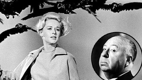 'The Birds' Turns 50: Alfred Hitchcock Drew Fear From Real-Life Flock