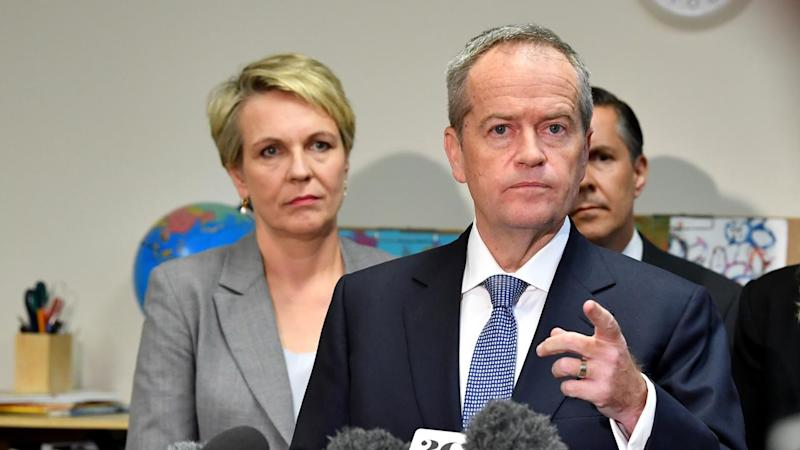 Bill Shorten has has rejected an offer from the Greens for a coalition on climate change policy