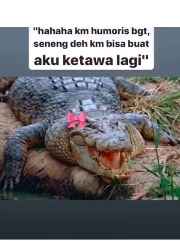 Meme modus buaya betina (Sumber: Twitter/jawafess)