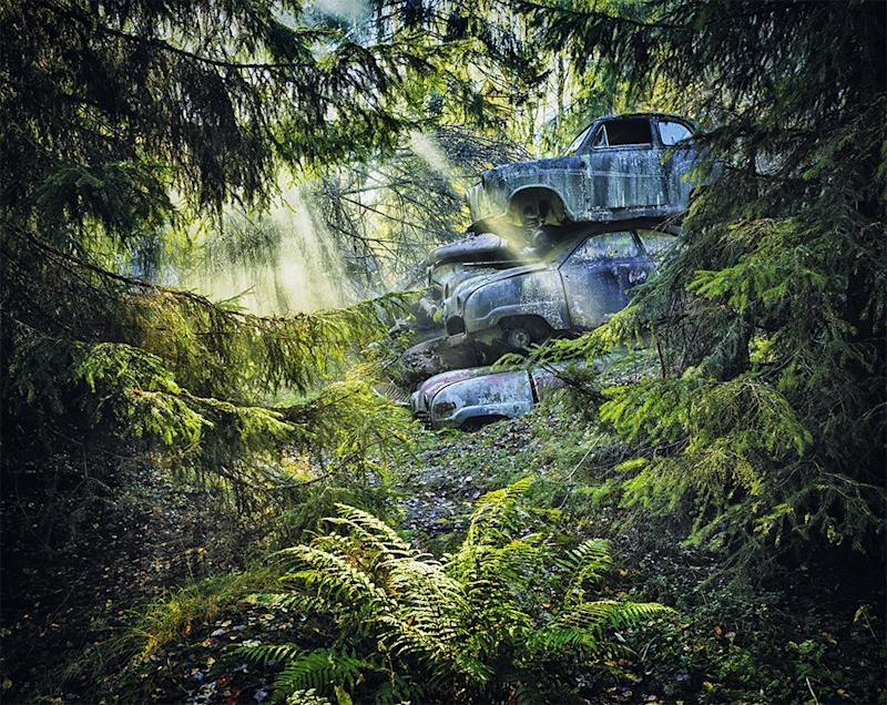 Mobil-mobil yang ditumpuk di hutan.