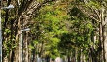 台中單車文旅 達人領路‧多元騎乘魅力