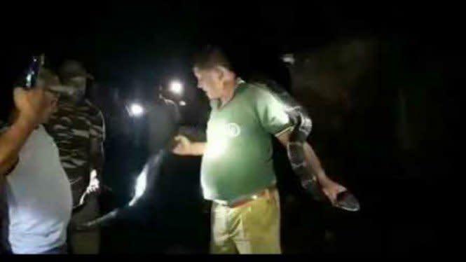 Kalungkan King Kobra di Leher, Penjaga Hutan Alami Nasib Sial
