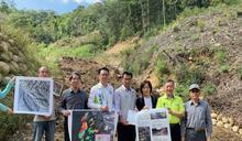 山友檢舉台中大坑造林地遭伐採 陳吉仲:伐採區涉及環境敏感區將規劃保留帶