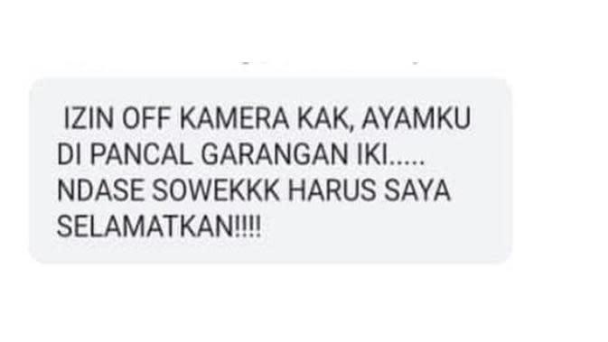 Chat izin off camera para maba yang bikin ketawa geli. (Sumber: Twitter/@dipperlilbaby)
