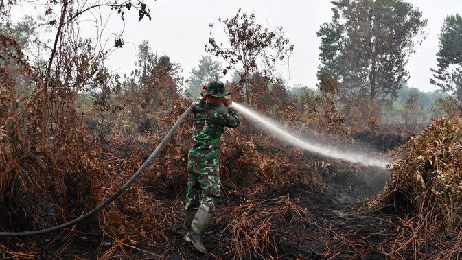 Prajurit TNI berusaha memadamkan kebakaran hutan dan lahan di Kabupaten Kampar, Provinsi Riau (12/9/2019). Kebakaran hutan yang terjadi membuat kekhawatiran tentang dampak meningkatnya wabah api di seluruh dunia pada pemanasan global. (AFP Photo/Adek Berry)
