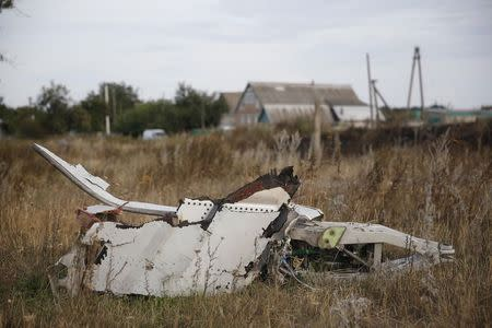 Wreckage is pictured at the crash site of Malaysia Airlines Flight MH17, near the settlement of Grabovo in the Donetsk region