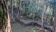 山友注意!全台山屋、雙北宜桃自然步道、森林育樂場域關閉休園一次看