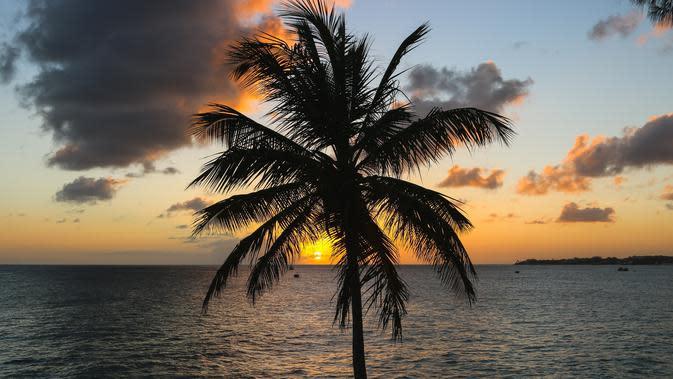Pemandangan salah satu pantai di Barbados | unsplash.com/@brian_yuri