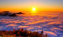 阿里山觀光 隙頂二延平山賞雲海斜陽 (圖)