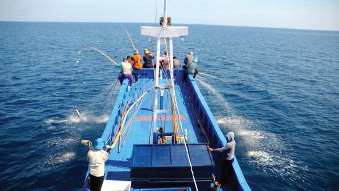 Apa rahasia dibalik mudahnya memancing cakalang ala nelayan Ternate sehingga begitu mudah untuk dipancing?