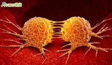 三軍總醫院研發CAR-T細胞治療 造福淋巴癌及血癌患者