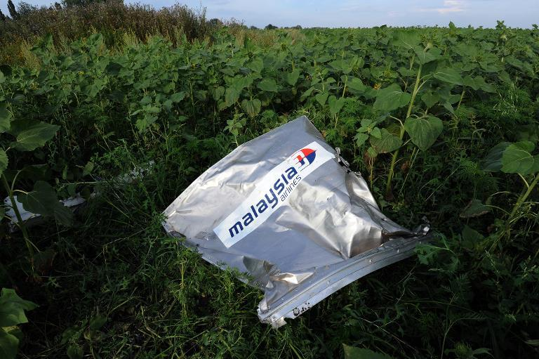 The Malaysia Airlines logo can be seen at the crash site of Flight MH17 near the village of Rassipnoe in rebel-held east Ukraine, on July 19, 2014