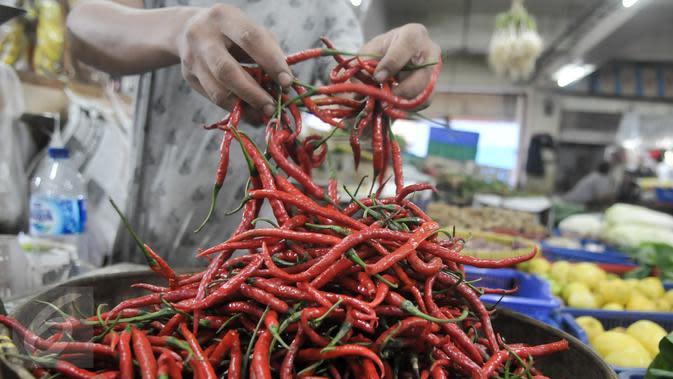 Pedagang menunjukan cabai merah kerinting, Jakarta, Senin (10/10). Harga cabai merah keriting kini dijual Rp50-60 ribu/kg, harga ini naik dari sebelumnya sekitar Rp30 ribu-40 ribu/kg, cabai rawit merah dijual Rp20-30 ribu/kg. (Liputan6.com/Yoppy Renato)