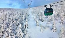 【Yahoo論壇/張惟綜】銀白色的奇幻造形世界:藏王樹冰