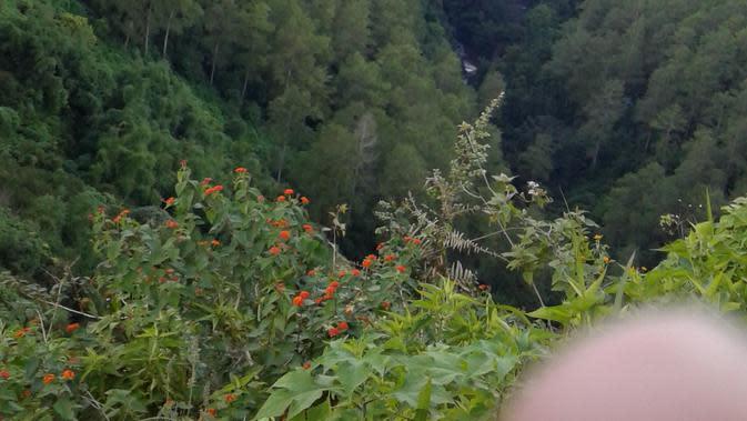 Pemandangan dari atas Tebing Keraton (Liputan6.com / Harun Mahbub)