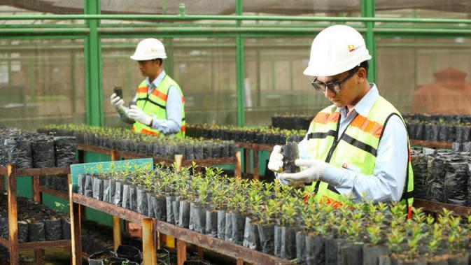 Pengelolaan lingkungan sejalan dengan nilai-nilai yang diterapkan PTBA.