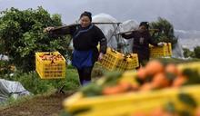 中國脫貧創造「人間奇蹟」 三個關鍵數據透露的玄機
