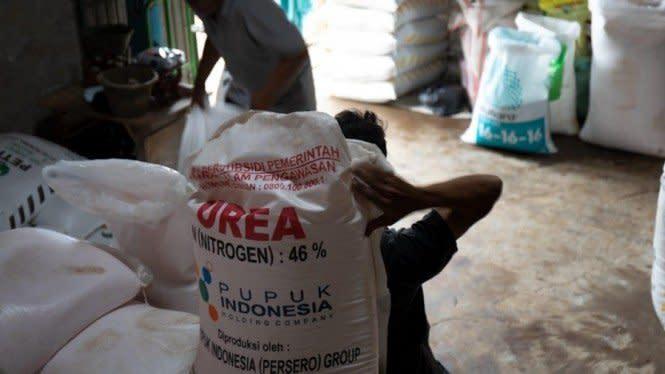 Petani yang Terdaftar di eRDKK Dipastikan Dapat Pupuk Subsidi