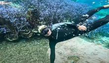 海底夢幻畫面曝 KID驚見殘酷亮點