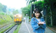 橫山鄉藝桐遶山花音樂派對 周末浪漫登場