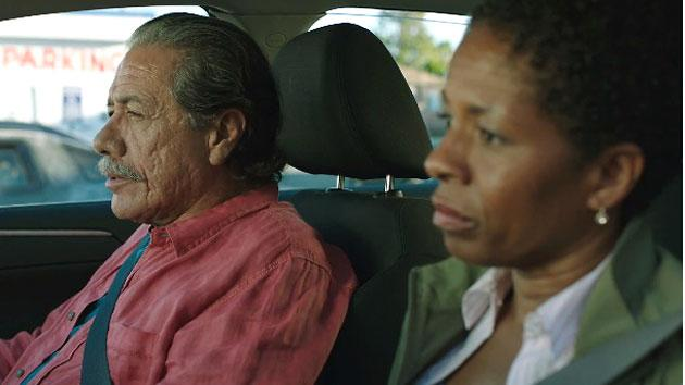 John Sayles reveals trailer for latest movie 'Go For Sisters'