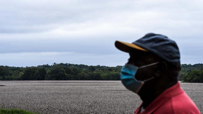Roosevelt Cruel melihat saat dia berdiri di dekat sebuah perkebunan kapas di Fayette, Jefferson County, Mississippi (28/9/2020). Dengan 85% populasinya terdiri dari orang Afrika-Amerika, daerah pedesaan ini memiliki proporsi penduduk kulit hitam tertinggi. (AFP/Chandan Khanna)