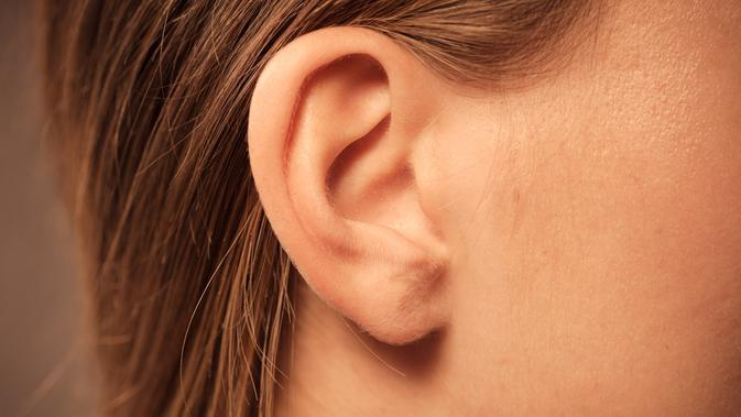Ilustrasi telinga (iStockphoto)