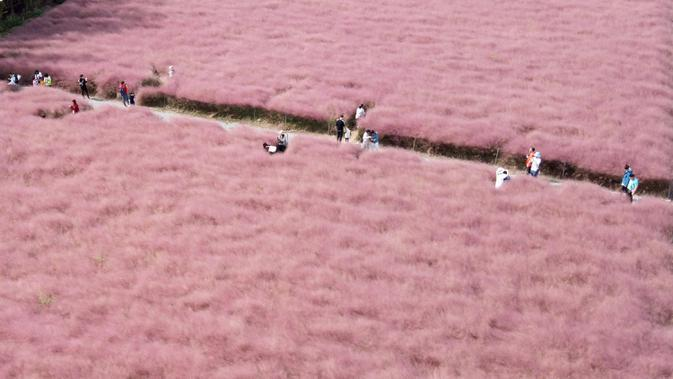 Foto yang diabadikan dari udara ini menunjukkan orang-orang mengunjungi Jiabei Country Park di Shanghai, China timur, pada 5 Oktober 2020, hari kelima libur Hari Nasional dan Festival Pertengahan Musim Gugur. (Xinhua/Liu Ying)