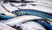 吃魚別吃這部位!醫:毒素超多會致命