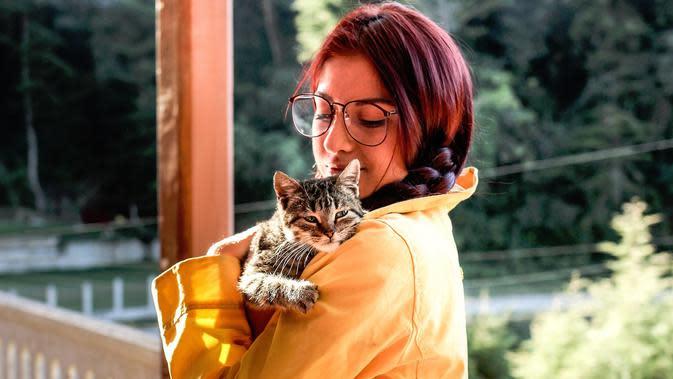 Ilustrasi memelihara kucing (dok. Pixabay.com/StockSnap/Putu Elmira)