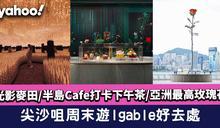 尖沙咀好去處〡Igable光影麥田/半島Cafe打卡下午茶/亞洲最高玫瑰花
