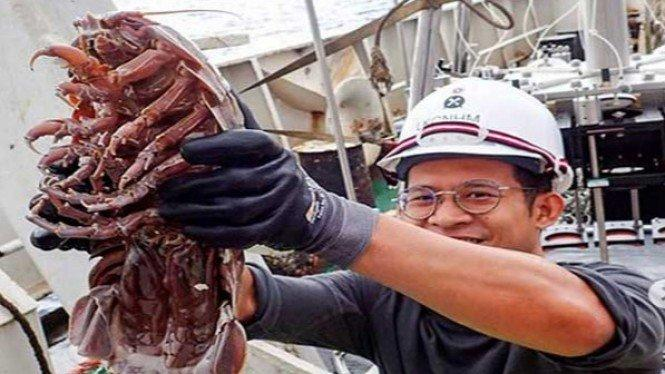 Peneliti Temukan Kutu Laut Raksasa di Perairan Indonesia