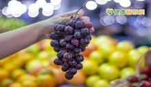 葡萄乾富有鐵質 可以改善臉色蒼白、手腳冰冷?