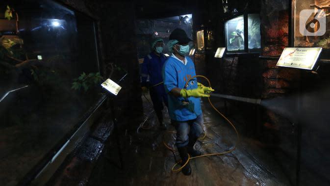 Total Kematian Kasus Positif Corona di Indonesia Ada 25 Orang, Rata-Rata Usia Tua