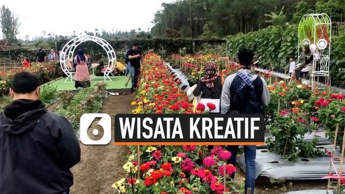 VIDEO: Taman Wisata Bunga di Kaki Gunung Ciremai