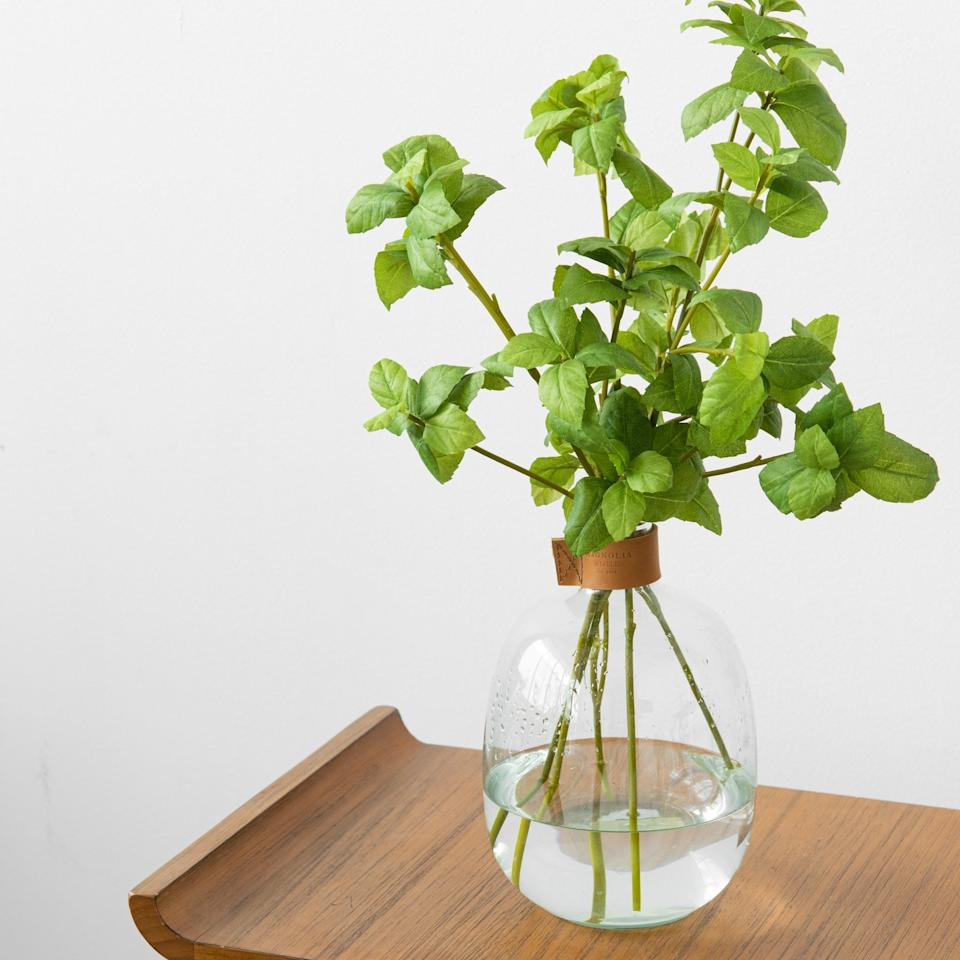 "<p><a href=""https://www.popsugar.com/buy/Basil-Plant-579244?p_name=Basil%20Plant&retailer=shop.magnolia.com&pid=579244&price=5&evar1=casa%3Aus&evar9=45957373&evar98=https%3A%2F%2Fwww.popsugar.com%2Fhome%2Fphoto-gallery%2F45957373%2Fimage%2F47525326%2FBasil-Plant&list1=shopping%2Chouse%20plants%2Csummer%2Cplants%2Cgardens%2Cdecor%20inspiration%2Chome%20shopping&prop13=mobile&pdata=1"" rel=""nofollow"" data-shoppable-link=""1"" target=""_blank"" class=""ga-track"" data-ga-category=""Related"" data-ga-label=""https://shop.magnolia.com/products/herb-stem?variant=20348817476"" data-ga-action=""In-Line Links"">Basil Plant</a> ($5, originally $12)</p>"