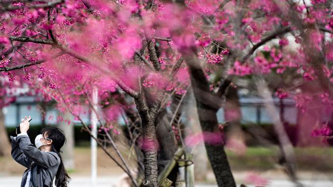 Seorang wanita mengenakan masker melewati pohon sakura di taman Ueno, Tokyo, Jepang (12/3/2020). Di tengah kekhawatiran akan penyebaran virus corona COVID-19, Gubernur Tokyo Yuriko Koike mengimbau warga menghindari kerumunan saat pesta tradisional