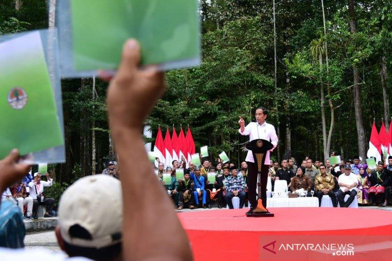 Presiden serahkan SK perhutanan sosial seluas 73,6 ribu hektar di Riau