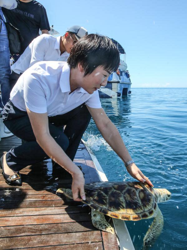Para sukarelawan melepaskan penyu ke laut di Wilayah Lingshui, Provinsi Hainan, China selatan, pada 9 Agustus 2020. Para peneliti memasang alat pelacak pada 10 ekor penyu untuk mempelajari kebiasaan dan habitat mereka. (Xinhua/Zhang Liyun)