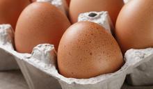 【拆解食安謠言】蛋殼斑點是感染了細菌,別吃?